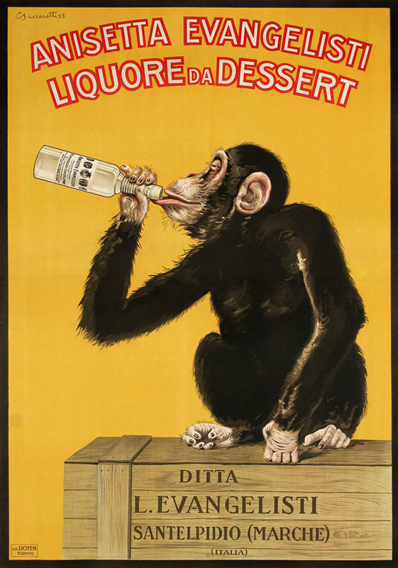 Monkey sitting on wooden crate drinks liquor from the bottle; yellow, brown, red, white